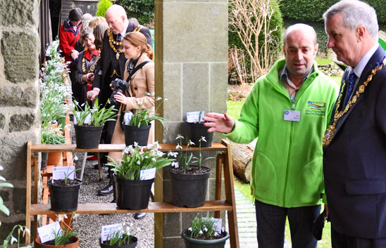 2015 Dorset Mayors visit the Heritage Collection - Shaftesbury Snowdrops