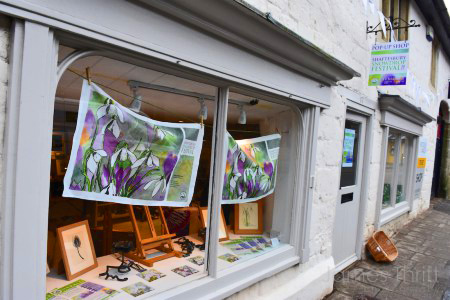 2017 Pop-Up Shop - Shaftesbury Snowdrops