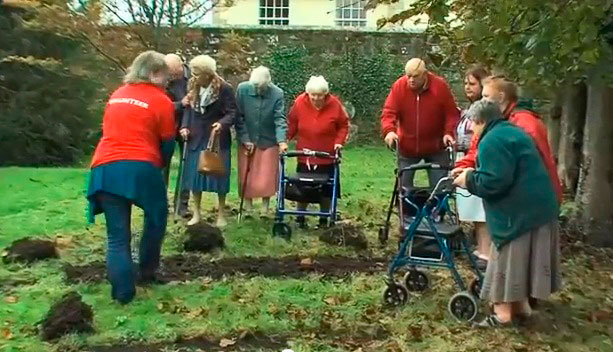 All Ages and Abilities Planted in Trinity - Shaftesbury Snowdrops