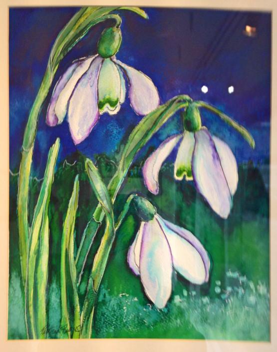 Patricia Burns Image 2015 - Shaftesbury Snowdrops
