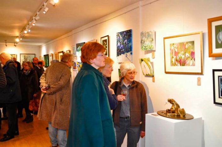 Shaftesbury Art Centre Gallery - Snowdrop Exhibition - Shaftesbury Snowdrops