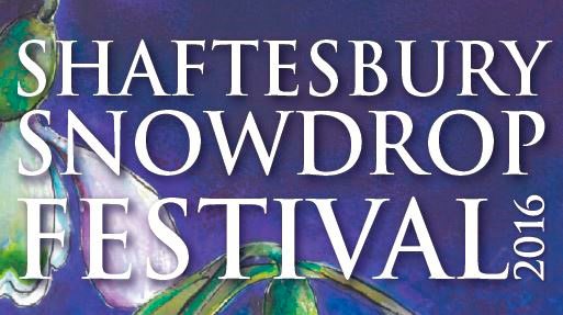 Snowdrop Festival 2016 Feb 16 - Shaftesbury Snowdrops