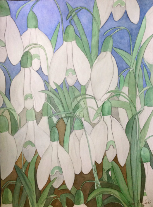 Zara MzQeen's Thinking of Jed (2) - Shaftesbury Snowdrops