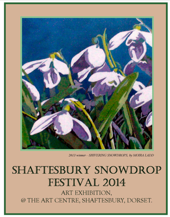 snowdrops square..brown jpg-1 - Shaftesbury Snowdrops