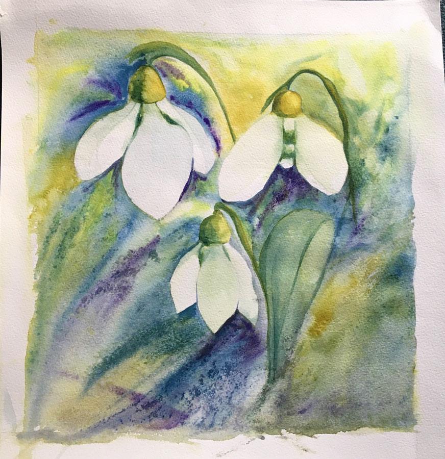Shaftesbury Snowdrops Exibition 2021 - Kathy Clarke