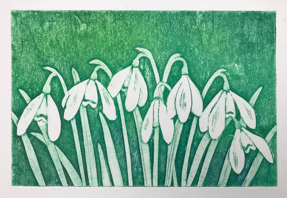 Shaftesbury Snowdrops Exibition 2021 - Nancy Jones